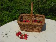 2012.5 strawberryroseessyakuyaku 030