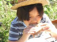 2012.9 garden sandtanboebi 009