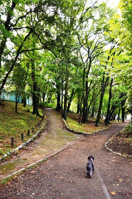 010_20121019095021.jpg