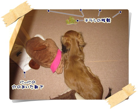 001_20121020094725.jpg