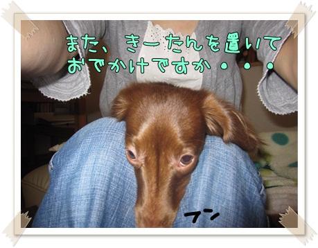 002_20120429170241.jpg