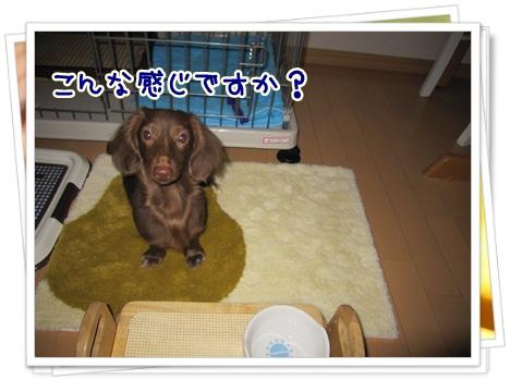 002_20120521092643.jpg
