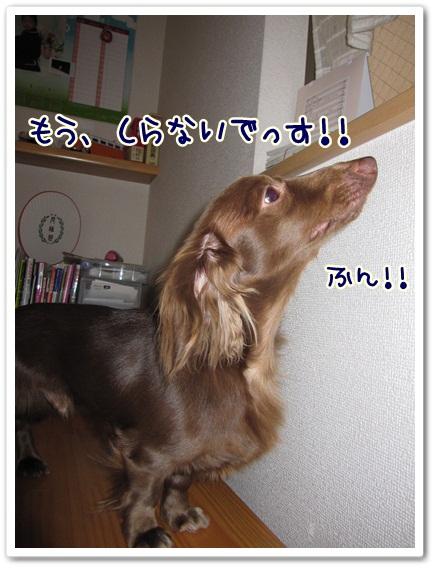 004_20120504155918.jpg
