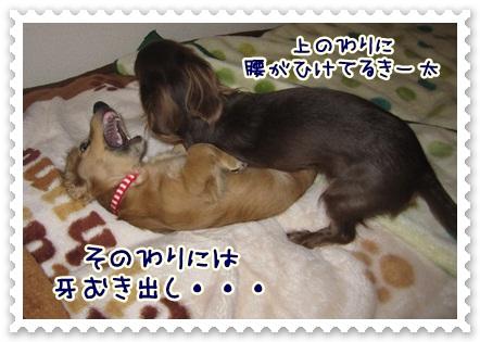 004_20121105115907.jpg