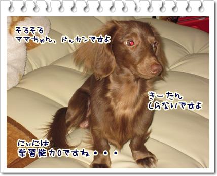 005_20120506085150.jpg