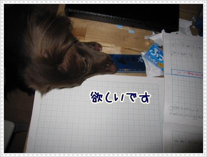 005_20120508084922.jpg