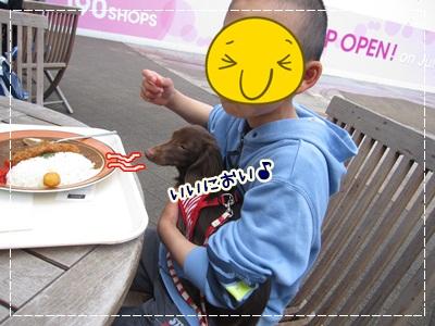 006_20120507085625.jpg