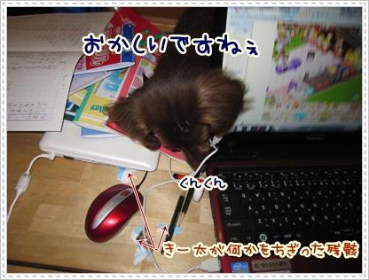 009_20120508084920.jpg