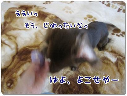 009_20120519172813.jpg