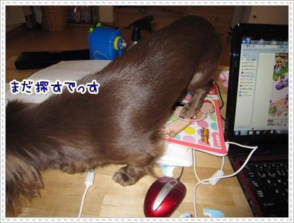 010_20120508084919.jpg