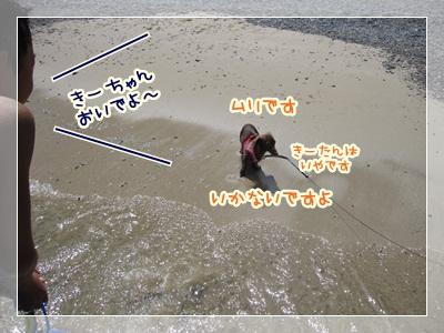 010_20120825143258.jpg