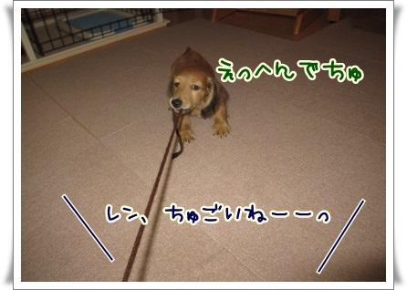 010_20121006150804.jpg