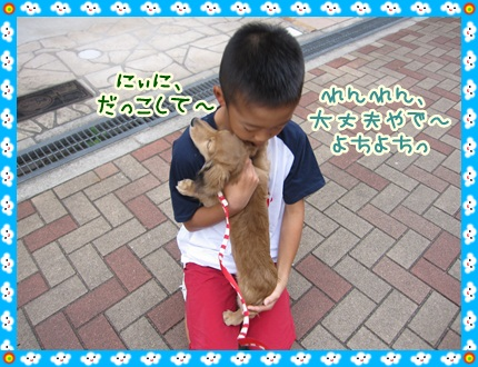 012_20121028105623.jpg