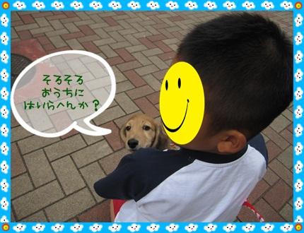 013_20121028110137.jpg