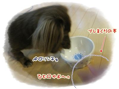 014_20120513211756.jpg