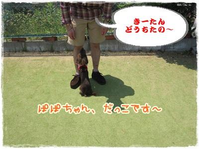 014_20120527152054.jpg
