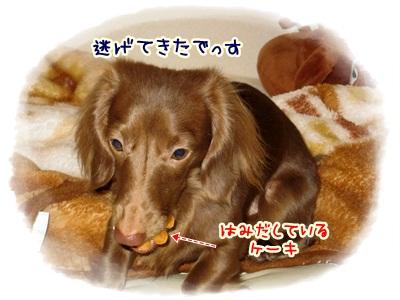 015_20120513211825.jpg