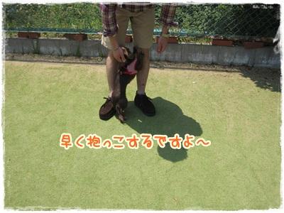 015_20120527152053.jpg