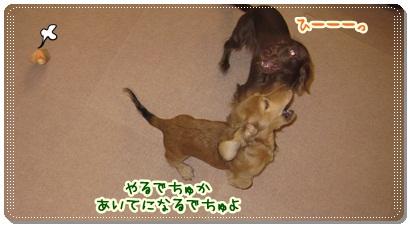 015_20121013091811.jpg