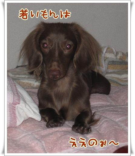 017_20121006150803.jpg