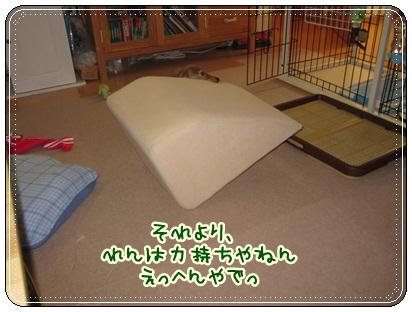 017_20121027102150.jpg