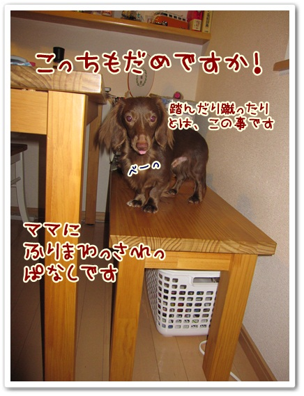 019_20120504155916.jpg
