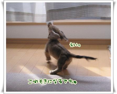 020_20121006150802.jpg