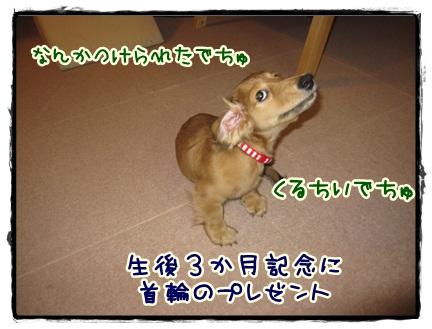 021_20121020204121.jpg
