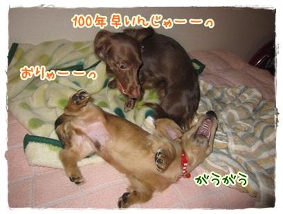 021_20121023100647.jpg