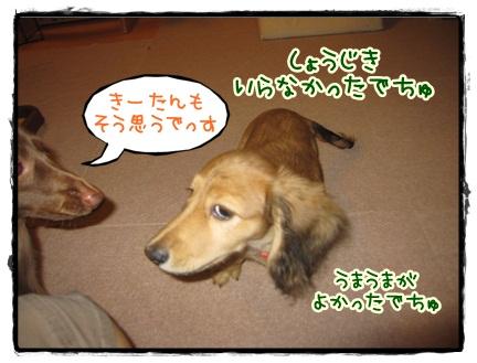 022_20121020204120.jpg
