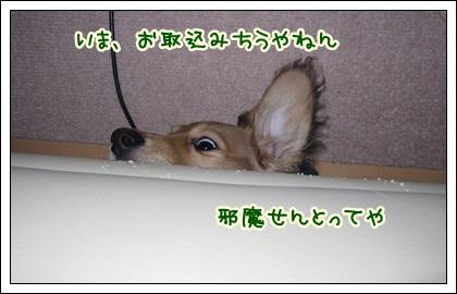 022_20121027102149.jpg
