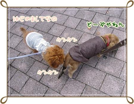 022_20121029180523.jpg