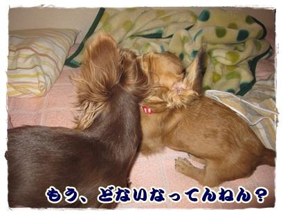 023_20121023100647.jpg