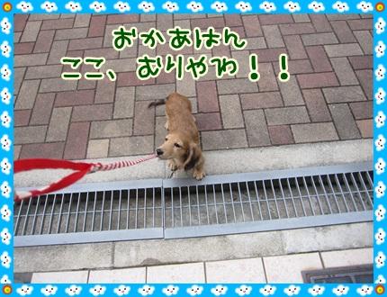023_20121028110136.jpg