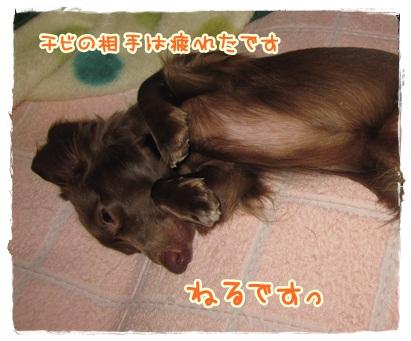033_20121023100707.jpg