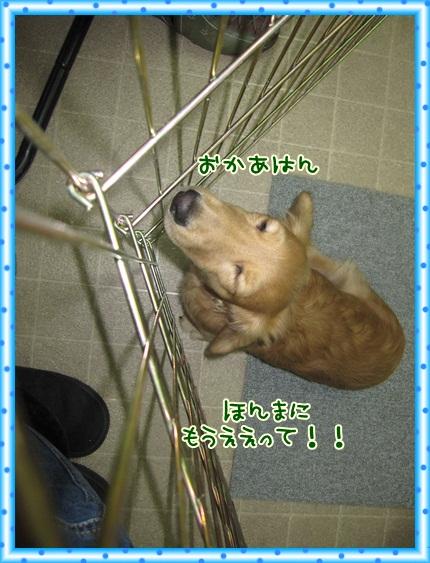 033_20121203091320.jpg