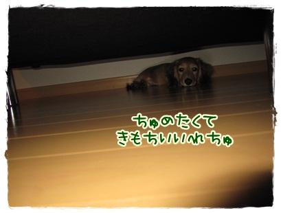 035_20121023100707.jpg