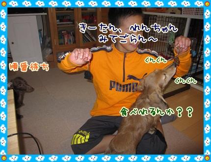 045_20121124105330.jpg