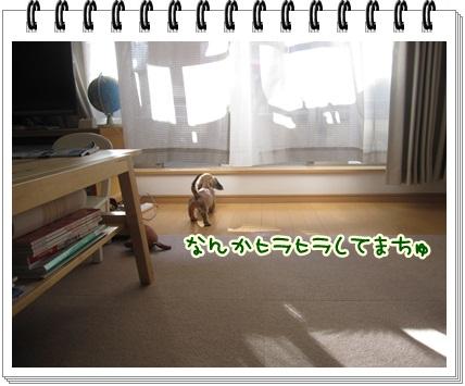 080_20121004102940.jpg