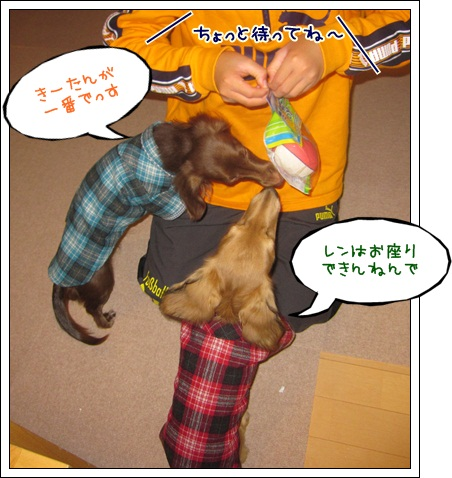 080_20121125105723.jpg