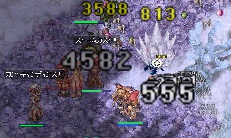 2011.8.9 はさみ虫(゜Д゜) 1