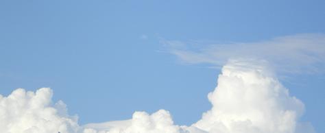 2011.8.24 ケーキぃ(゜Д゜) 1