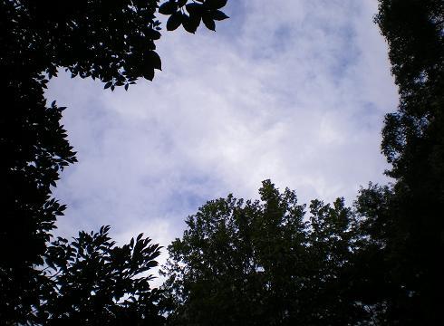 2011.8.31 行き当たりばったりでぇとw 【1日目】 6