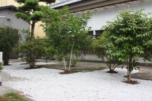 東側のお庭