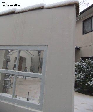 いきなりの雪・・・