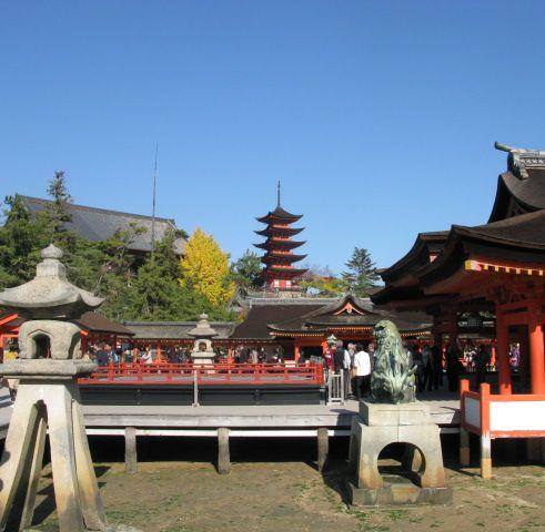 5重の塔と銀杏の木