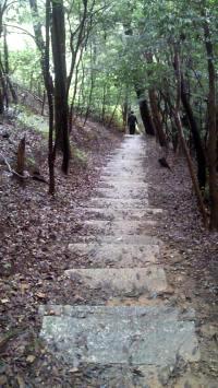 尾張富士から入鹿池ルート1