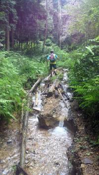 信貴山登山道、水没?