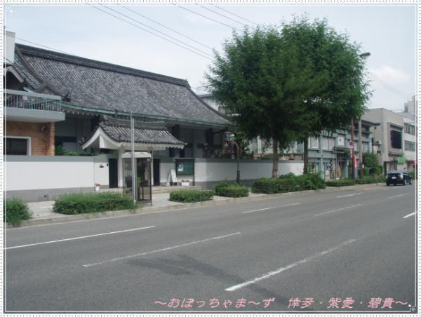 P9080288-1.jpg