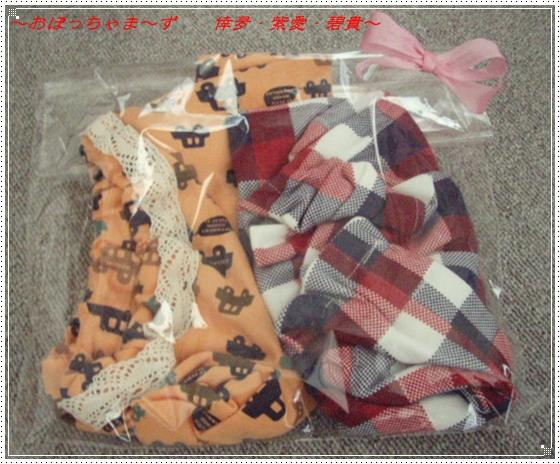 PA050058-1.jpg